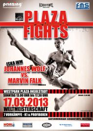Plaza Fights 2013
